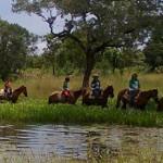 cavalgada-rural-mt