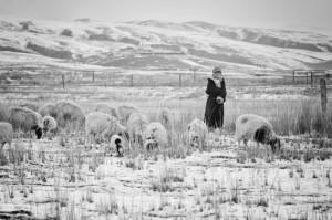 Com o surgimento da agricultura e da criação de animais, surge também o trabalho.