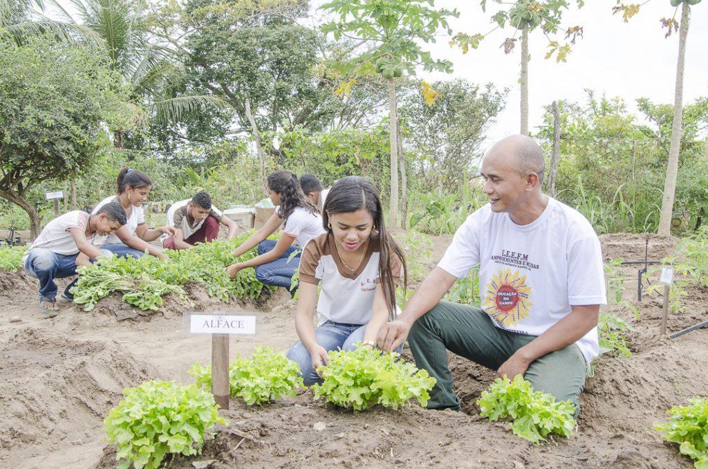 alunos fazem horta em escola